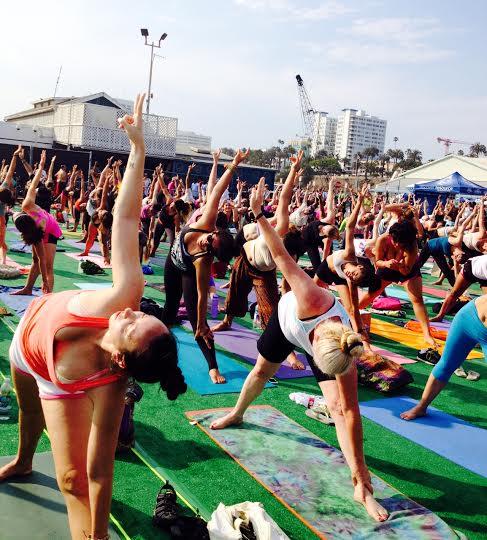 yogis wanderlust 2013